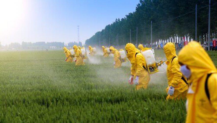 Tumeurs des agriculteurs et pesticides