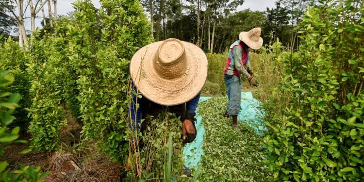 Colombie: entre l'ombre et la lumière